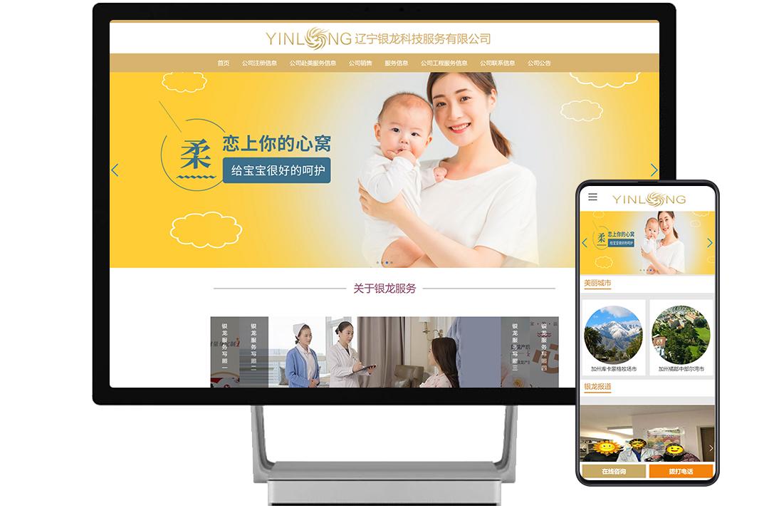 辽宁银龙科技服务有限公司